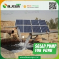 DC voltage solar powered borehole pumps for pool and pond