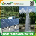DC voltage solar powered water fountain pump