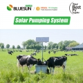 Submersible solar pump system AC pump and controller for garden farm irrigation