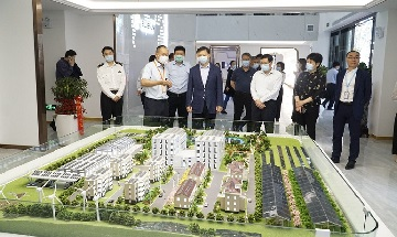 Vice Governor Zhang Xi brought the customs director of the Provincial Department of Commerce, the head of the Shushan District and leaders of various departments to visit Bluesun Solar.