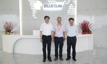 The Director Of Qinghai Provincial Department Of Commerce Came To Visit Bluesun Solar